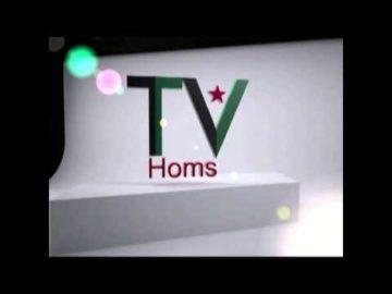 3D Max - TV Homs